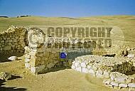 Tel Arad Altar 002