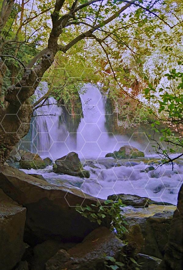 banias waterfall 0018