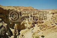 Judean Desert 005