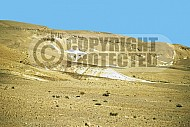 Mount Karkom 001