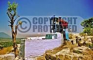 Ari Tomb 0009
