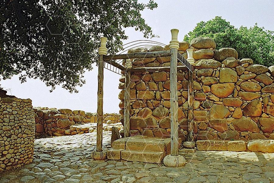 Tel Dan King's Throne 002