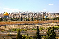 Jerusalem Old City View From Mt Of Olives 005