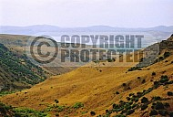 Golan Heights 0026