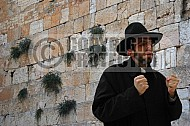 Kotel Man Praying 042