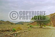 Mount Solomon 0003