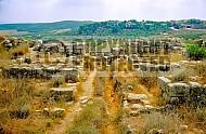 Tel Gezer 014