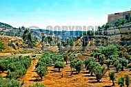 Jerusalem Kedron Valley 001