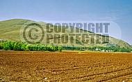 Mount Gilboa 0003