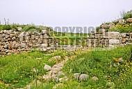 Tel Lachish 009