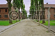 Auschwitz Barracks 0018