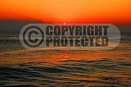 Florida Sunrise 006