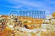 Tel Lachish 008