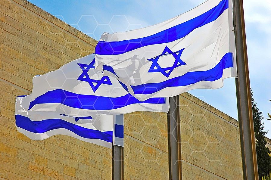 Israel Flag 010