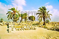 Tel Megiddo Ruins 004