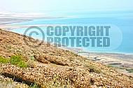 Dead Sea 014