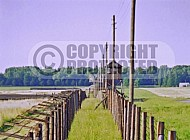 Majdanek Barbed Wire Fence 0003
