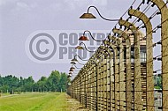 Birkenau Electrified Barbed Wire Fence 0017