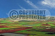 Jezreel Valley 003