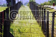 Majdanek Barbed Wire Fence 0002