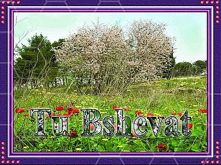 Jewish Holidays 021