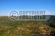 Judaean Hills 0004
