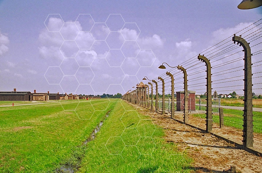Birkenau Electrified Barbed Wire Fence 0003