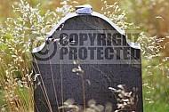 Bergen Belsen Jewish Memorial 0010