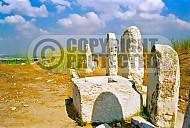 Tel Gezer 005