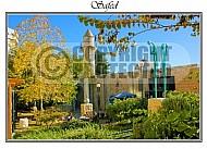 Safed Kabbalah 023