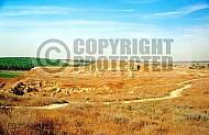 Tel Lachish 006