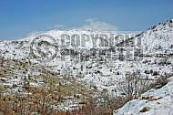Mount Hermon 0008
