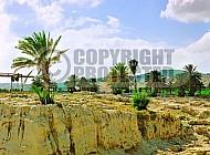 Tel Megiddo Altar 001