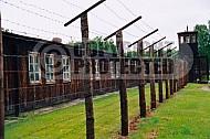 Stutthof Barracks 0017
