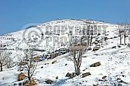 Mount Hermon 004
