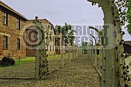 Auschwitz Electrified Barbed Wire Fence 0015