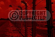 Birkenau Electrified Barbed Wire Fence 0016