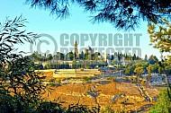 Jerusalem Mount Zion 001