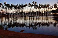Reflections Hawaii 001