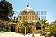 Jerusalem Dom Flevit 004