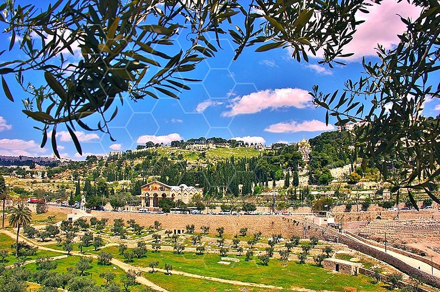Jerusalem Mount Of Olives 002