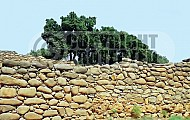 Tel Dan City Wall 001