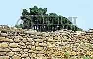 Tel Dan City Wall 001