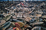 Auschwitz Shoes from Inmates 0006