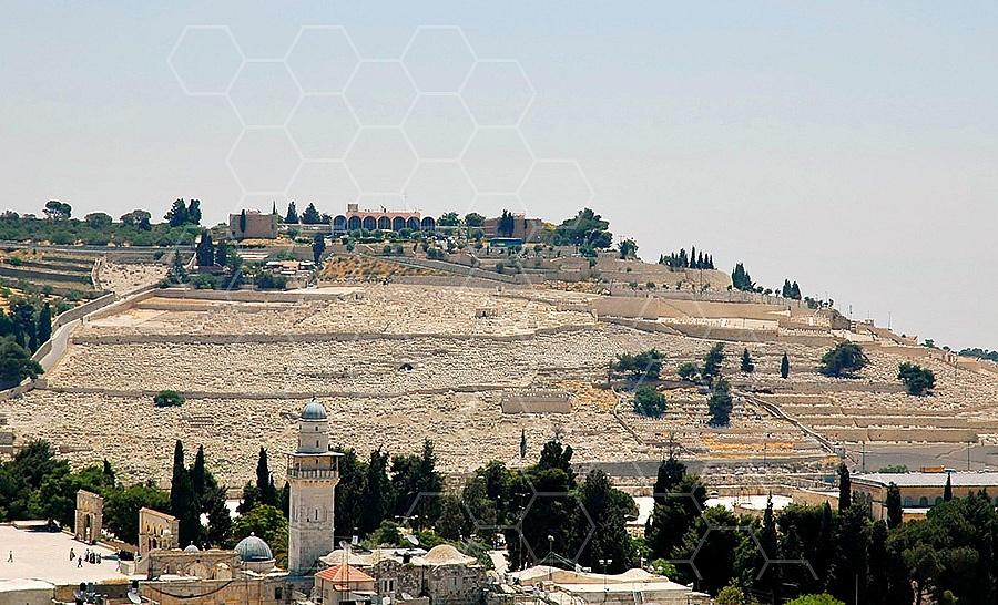 Jerusalem Mount Of Olives 008