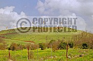 Golan Heights 0014