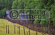 Natzweiler-Struthof Watchtower 0004