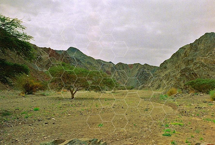 Mount Solomon 0031