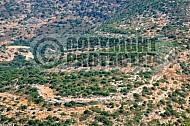 Judaean Hills 0005