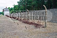 Sachsenhausen Barbed Wired Fence 0006